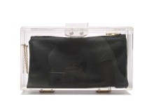 Basic Perspex Clutch - Black