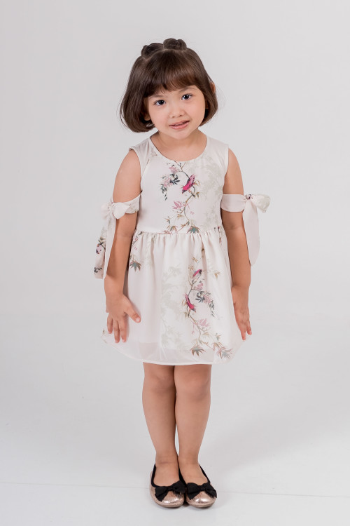 Miss Colton Dress