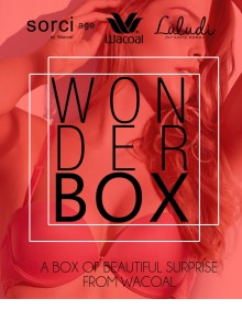 Wacoal Wonder Box