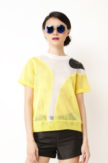 Yellow Art Netted Top