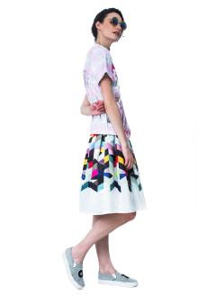 Rainbow Graphic Skirt