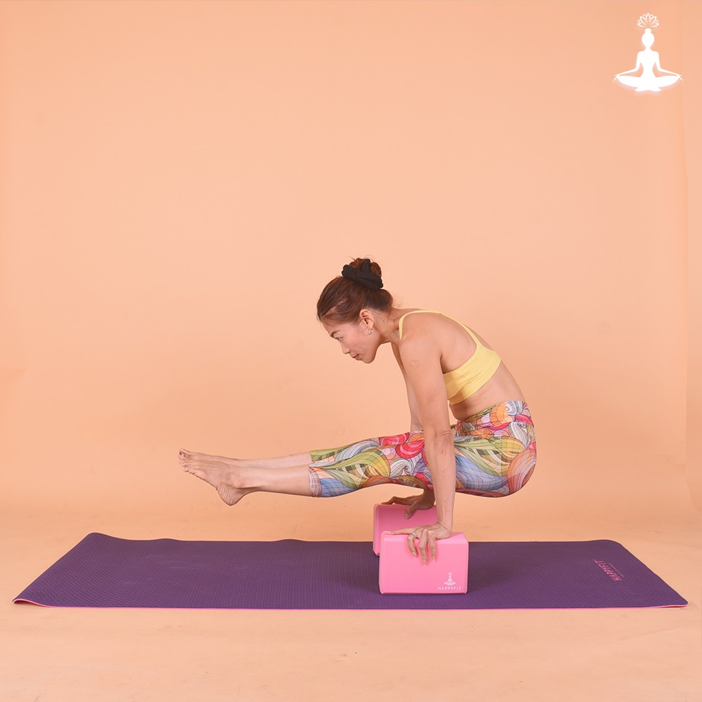 Yoga Brick 2