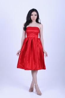 Gwen Tube Dress