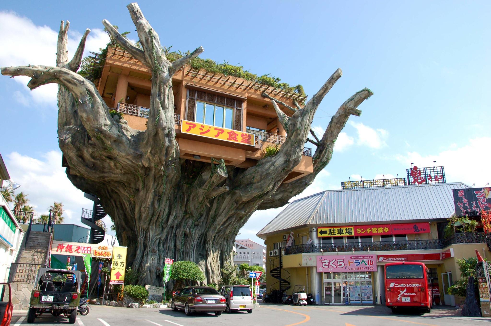 Ini Restoran Pohon Unik di Jepang image