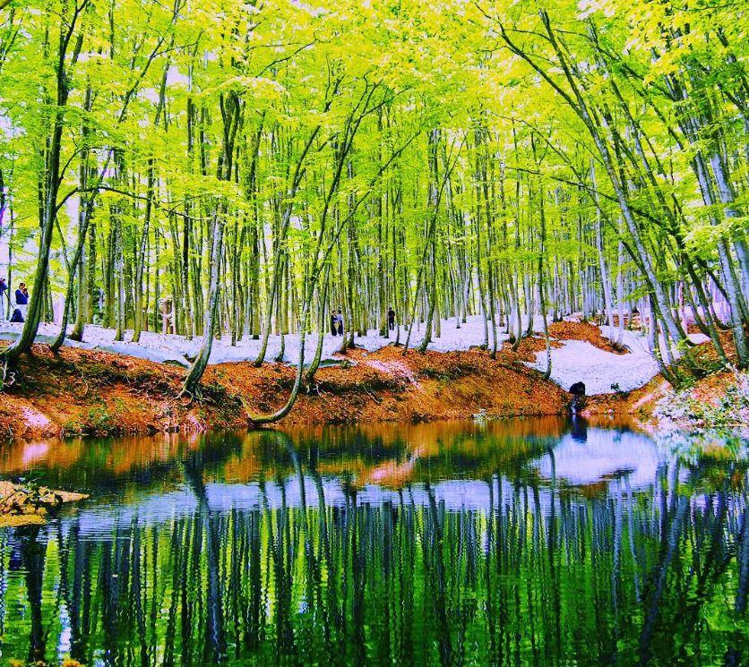 Bijinbayashi, Tempat Wisata di Jepang Yang Jarang Diketahui image