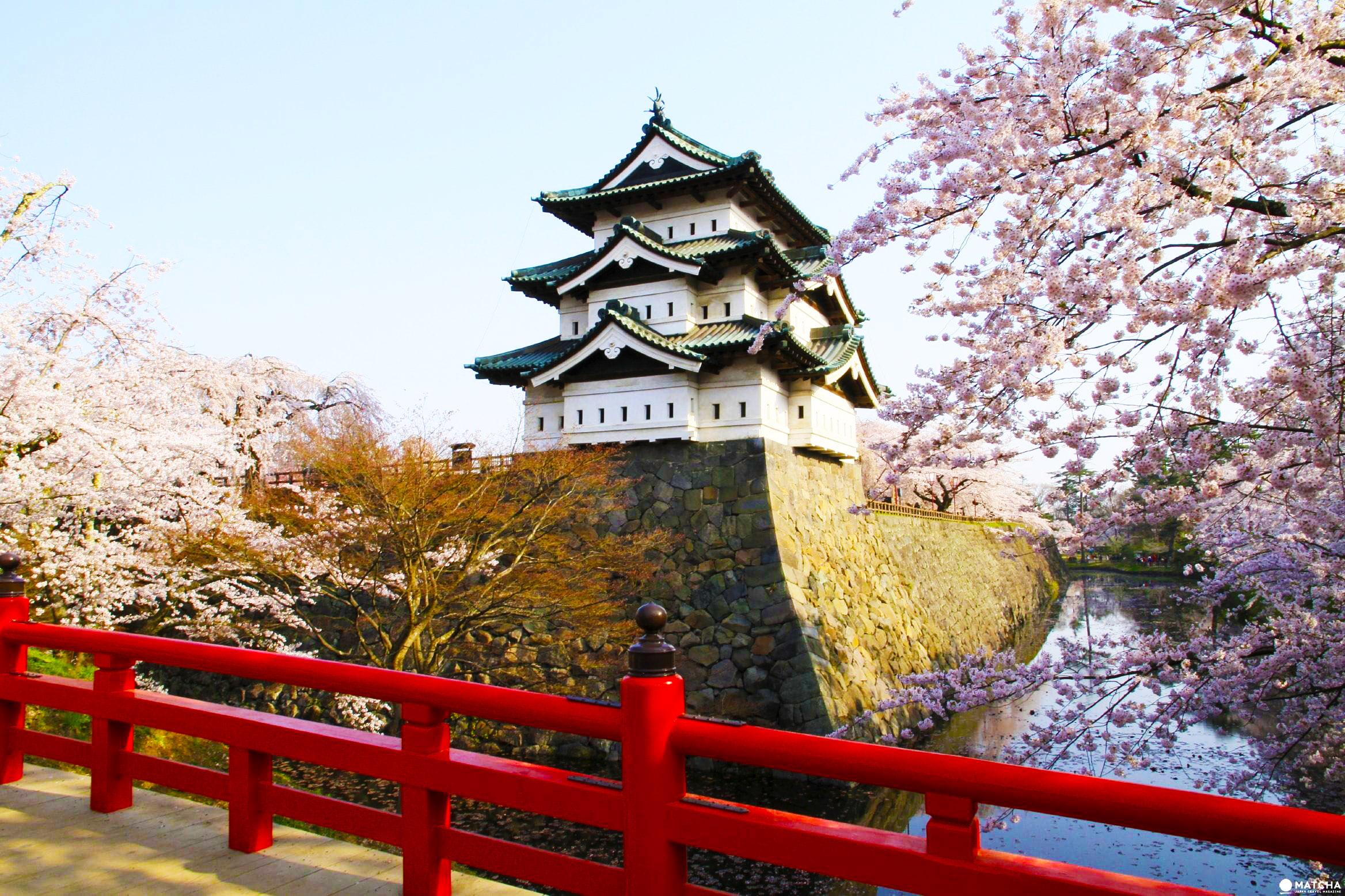 7 Tempat Terindah Melihat Bunga Sakura di Jepang image