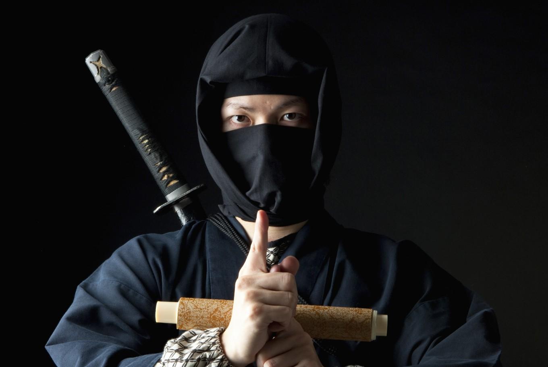 Menjadi Ninja Sungguhan bersama Kyoto Ninja Run image