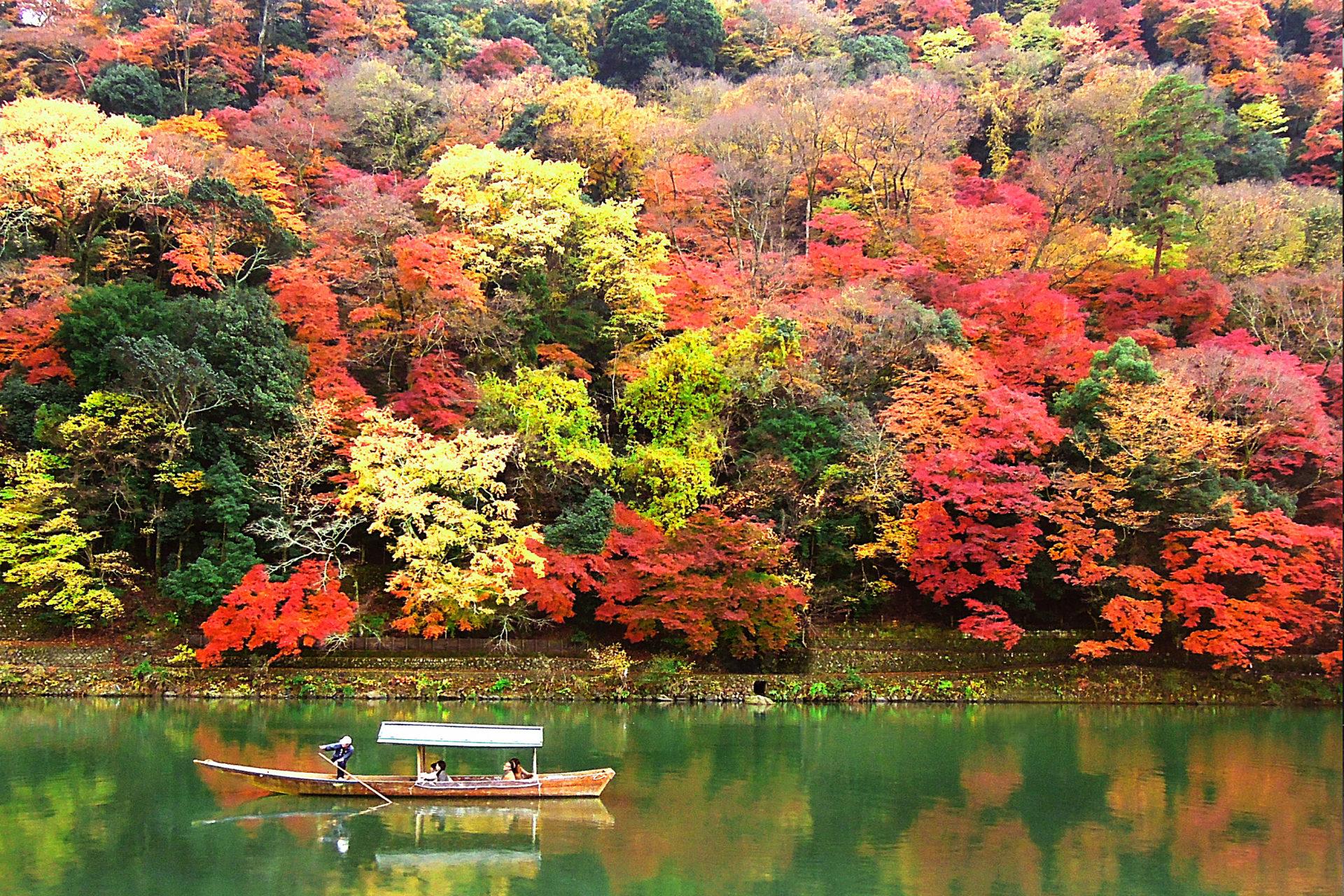 5 Kegiatan di Tengah Alam Arashiyama, Kyoto image