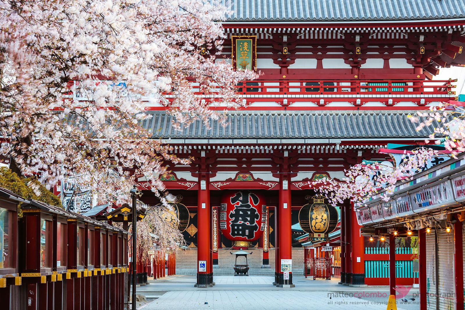 Pertama Kali ke Kuil Senso-ji? Ini Panduannya! image