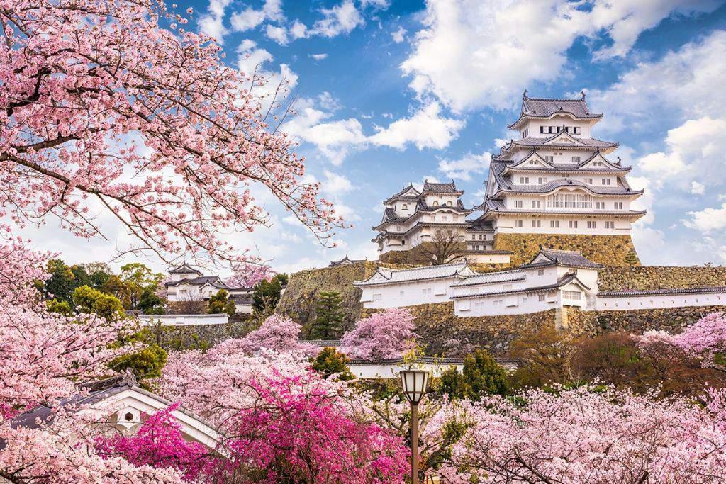 5 Kastil di Jepang yang Punya Panorama Indah saat Musim Sakura image