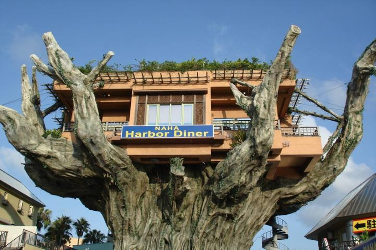 Ini Restoran Pohon Unik di Jepang