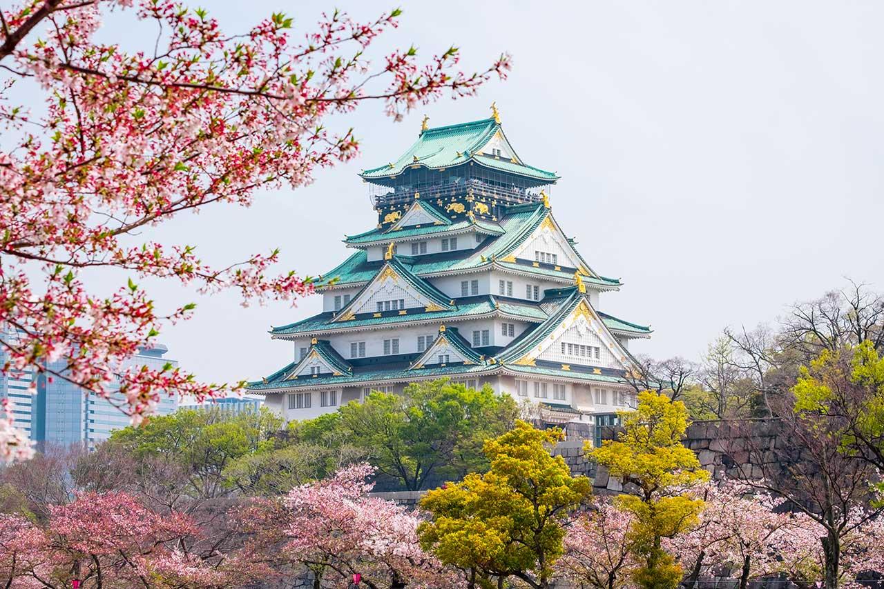 Kastil Osaka dan bunga sakura