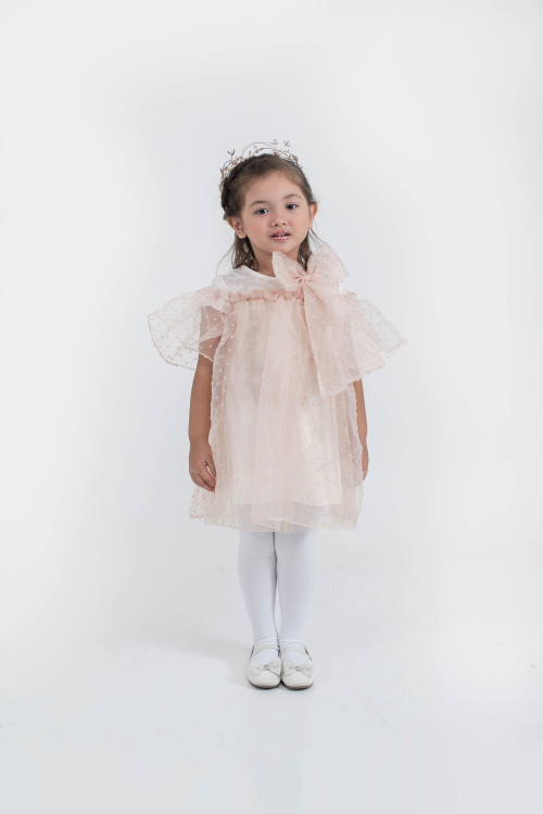 Miss Clare Dress