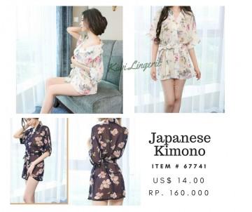 Elegant Japanese/Chinese Kimono image