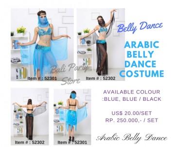 Arabian Belly Dance Costume/ Arabian Belly Dance Kostum image