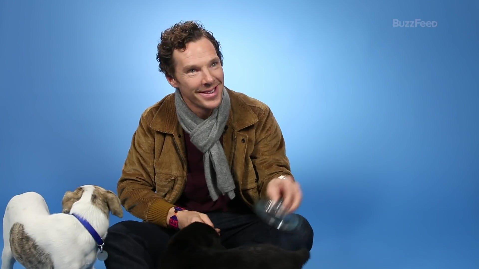 Tokoh Vegan Bulan Agustus : Benedict Cumberbatch