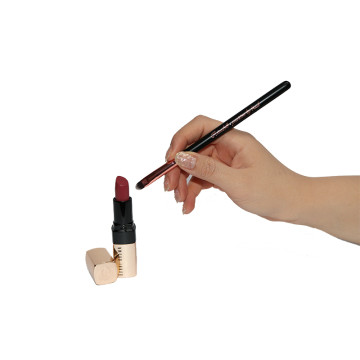 PRECISION LIP BRUSH - BLACK image