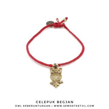 Celepuk Begjan - Owl image