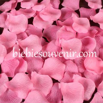 Rose Petals Blossoms Pink (21) image