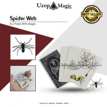 Spider Card image